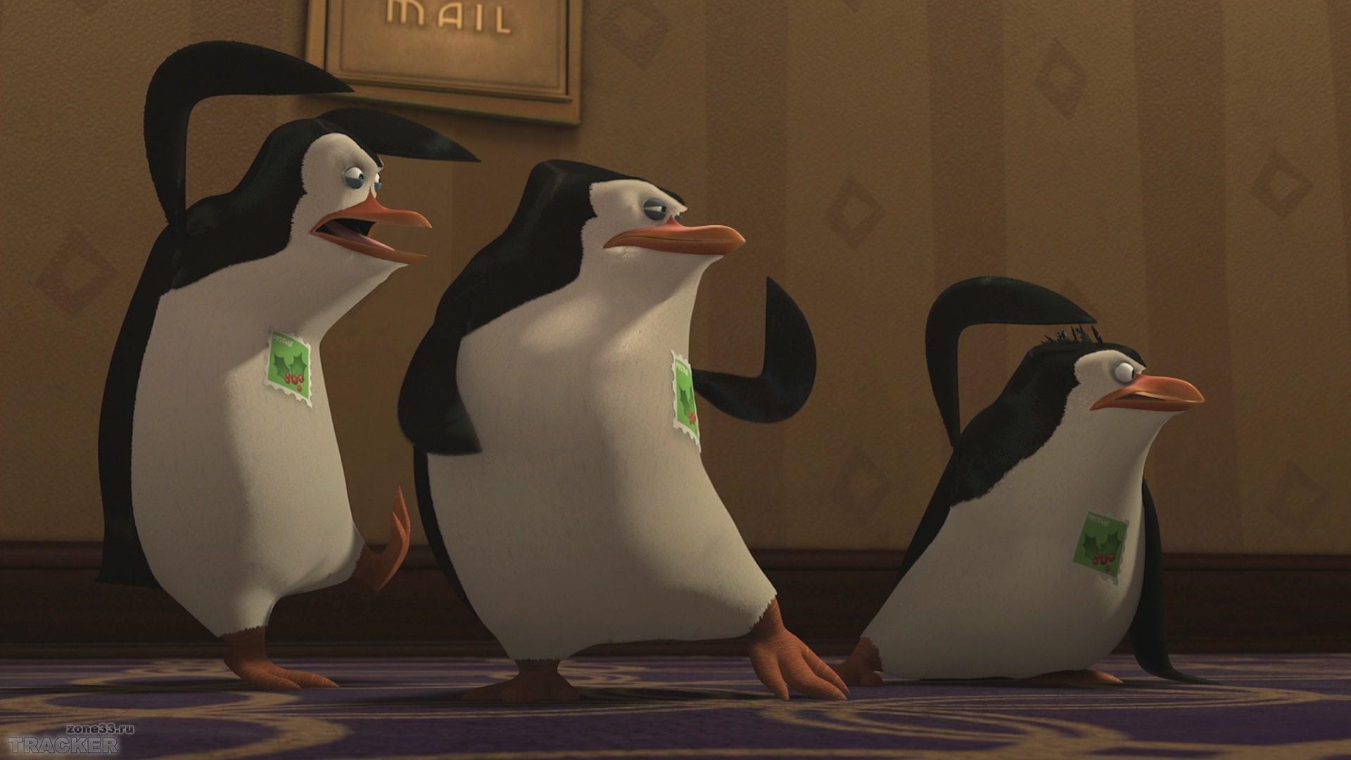 Смотреть пингвины из мадагаскара 23 фотография